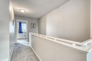 Photo 22: 35 Beddington Gardens NE in Calgary: Beddington Heights Row/Townhouse for sale : MLS®# A1130135