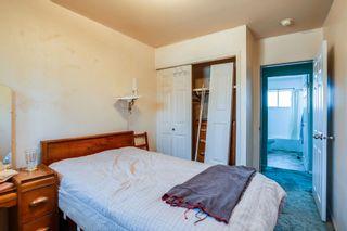 Photo 22:  in Edmonton: Zone 22 House for sale : MLS®# E4254166