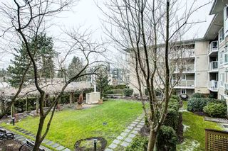 "Photo 24: 214 22255 122 Avenue in Maple Ridge: West Central Condo for sale in ""MAGNOLIA GATE"" : MLS®# R2539586"