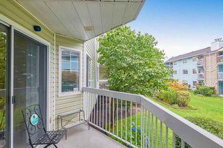 Photo 3: 114 22514 116 Avenue in Maple Ridge: East Central Condo for sale : MLS®# R2489606