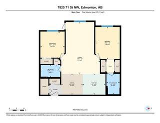 Photo 29: 235 7825 71 Street in Edmonton: Zone 17 Condo for sale : MLS®# E4244303