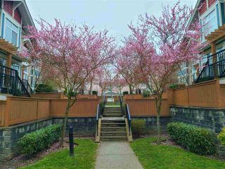 """Photo 3: 29 6036 164 Street in Surrey: Cloverdale BC Townhouse for sale in """"Arbour Village"""" (Cloverdale)  : MLS®# R2560746"""