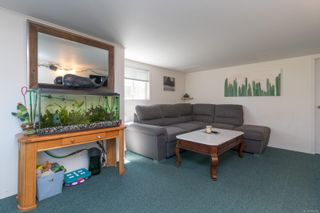 Photo 38: 20 Bushby St in : Vi Fairfield East House for sale (Victoria)  : MLS®# 879439