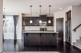 Photo 5: 1200 BRIGHTONCREST Common SE in Calgary: New Brighton Detached for sale : MLS®# A1066654