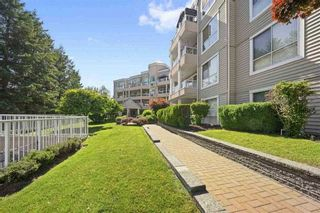 """Photo 1: 317 11605 227 Street in Maple Ridge: East Central Condo for sale in """"The Hillcrest"""" : MLS®# R2524705"""