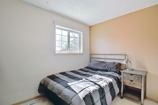 Photo 26: 131 Bridlewood Circle SW in Calgary: Bridlewood Detached for sale : MLS®# A1126092
