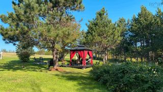 Photo 6: 17 Sutherland's Lane in Scotsburn: 108-Rural Pictou County Residential for sale (Northern Region)  : MLS®# 202124344