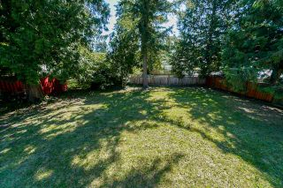 """Photo 18: 4072 202A Street in Langley: Brookswood Langley House for sale in """"Brookswood"""" : MLS®# R2379406"""