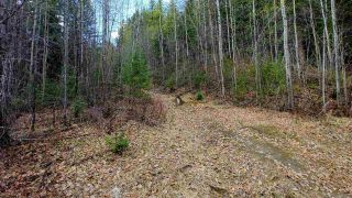 "Photo 9: LOT 2 CRANBROOK HILL Road in Prince George: Cranbrook Hill Land for sale in ""CRANBROOK HILL"" (PG City West (Zone 71))  : MLS®# R2447709"