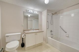 Photo 19: 3117 6818 Pinecliff Grove NE in Calgary: Pineridge Apartment for sale : MLS®# A1069420