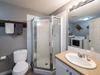 Photo 23: 139 Springs Crescent SE: Airdrie Detached for sale : MLS®# A1065825