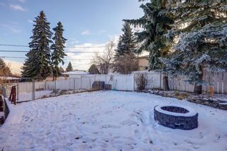 Photo 24: 11 Celtic Road NW in Calgary: Cambrian Heights Detached for sale : MLS®# A1050737