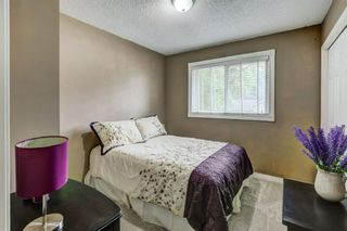 Photo 21: 184 Mountain Circle SE: Airdrie Detached for sale : MLS®# A1137347