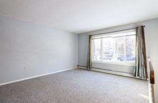 Photo 5: 10217 89 Street in Edmonton: Zone 13 House Duplex for sale : MLS®# E4222725
