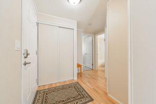 Photo 24: 26 GRAYWOOD Cove: Stony Plain House for sale : MLS®# E4262052