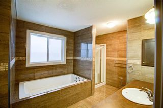 Photo 19: 6 COPPERPOND Court SE in Calgary: Copperfield Detached for sale : MLS®# C4292928