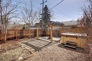 Photo 42: 800 Acadia Drive SE in Calgary: Maple Ridge Detached for sale : MLS®# A1091895
