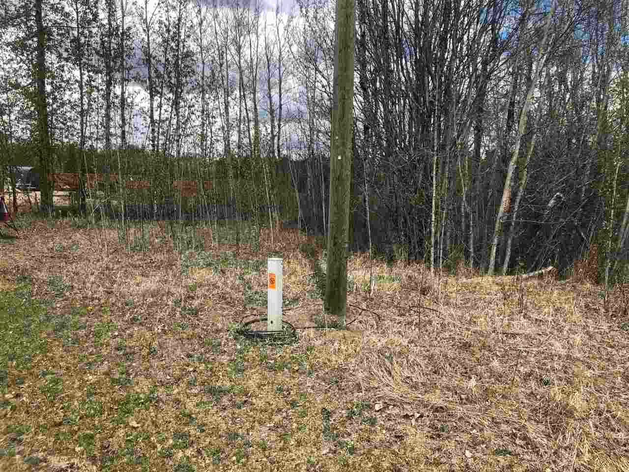Main Photo: 93-15065 Twp Rd 470: Rural Wetaskiwin County Rural Land/Vacant Lot for sale : MLS®# E4243875