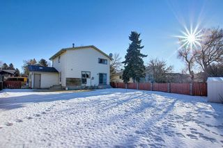 Photo 31: 3711 39 Street NE in Calgary: Whitehorn Detached for sale : MLS®# A1063183