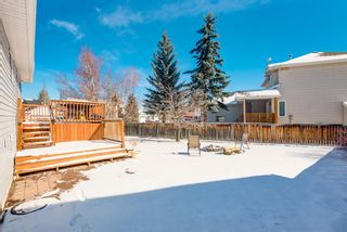 Photo 32: 16 Meadow Close: Cochrane Detached for sale : MLS®# A1088829