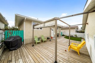 Photo 26: 3320 Dover Ridge Drive SE in Calgary: Dover Detached for sale : MLS®# A1141061