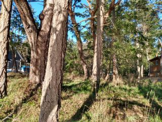 Photo 8: 161 Colvilleton Trail in : Isl Protection Island Land for sale (Islands)  : MLS®# 870953