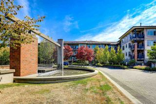 """Photo 1: 415 9299 TOMICKI Avenue in Richmond: West Cambie Condo for sale in """"MERIDIAN GATE"""" : MLS®# R2580304"""