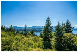 Photo 70: 3630 McBride Road in Blind Bay: McArthur Heights House for sale (Shuswap Lake)  : MLS®# 10204778