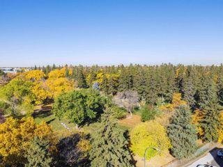 Photo 42: 433 10531 117 Street in Edmonton: Zone 08 Condo for sale : MLS®# E4264258