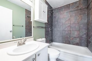 Photo 17: 7 4328 75 Street NW in Calgary: Bowness Apartment for sale : MLS®# A1094944