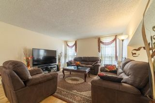 Photo 3: 4333 58 Street NE in Calgary: Temple Detached for sale : MLS®# A1092710