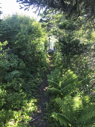 Photo 26: Lot 5 & 1064 Long Cove Road in Port Medway: 406-Queens County Residential for sale (South Shore)  : MLS®# 202101023