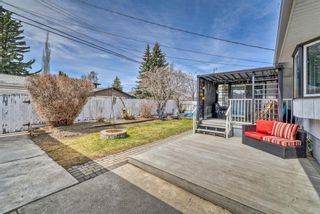 Photo 39: 10843 Mapleshire Crescent SE in Calgary: Maple Ridge Detached for sale : MLS®# A1099704