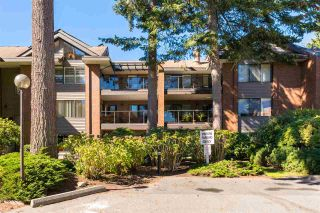 "Photo 19: 208 15270 17 Avenue in Surrey: King George Corridor Condo for sale in ""Cambridge"" (South Surrey White Rock)  : MLS®# R2377704"