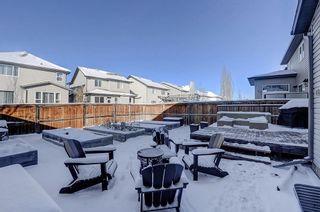 Photo 28: 60 CRANBERRY CI SE in Calgary: Cranston Detached for sale : MLS®# C4274885