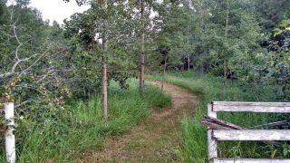 Photo 33: 51121 Range Road 270: Rural Parkland County House for sale : MLS®# E4248084