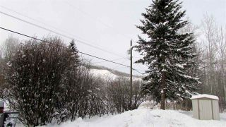 Photo 15: 9910 ADAMS Street: Hudsons Hope House for sale (Fort St. John (Zone 60))  : MLS®# R2519765