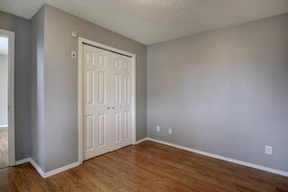 Photo 13: 144 1717 60 Street SE in Calgary: Red Carpet Apartment for sale : MLS®# A1131300