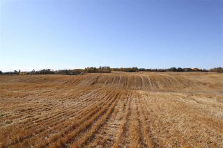 Photo 2: TWP 495 RR 232: Rural Leduc County Rural Land/Vacant Lot for sale : MLS®# E4216268