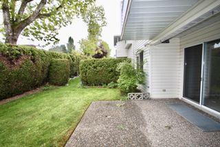 Photo 33: 52 3054 Trafalgar Street in Abbotsford: Central Abbotsford Townhouse for sale : MLS®# R2578031