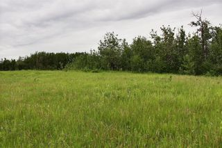 Photo 6: 33538 Rg RD 30: Rural Mountain View County Land for sale : MLS®# C4305650
