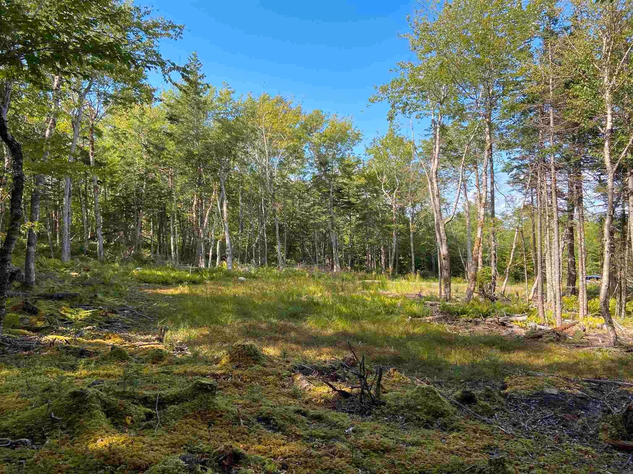 Main Photo: Lot 35 Wall Street in Cape George: 305-Richmond County / St. Peters & Area Vacant Land for sale (Highland Region)  : MLS®# 202123287