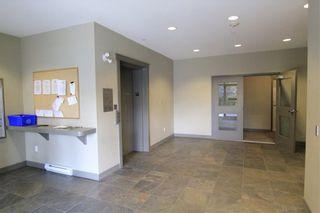 Photo 4: 211 10237 133 STREET in Surrey: Whalley Condo for sale (North Surrey)  : MLS®# R2204452