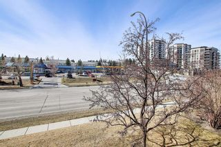 Photo 30: 1308 1308 Millrise Point SW in Calgary: Millrise Apartment for sale : MLS®# A1089806