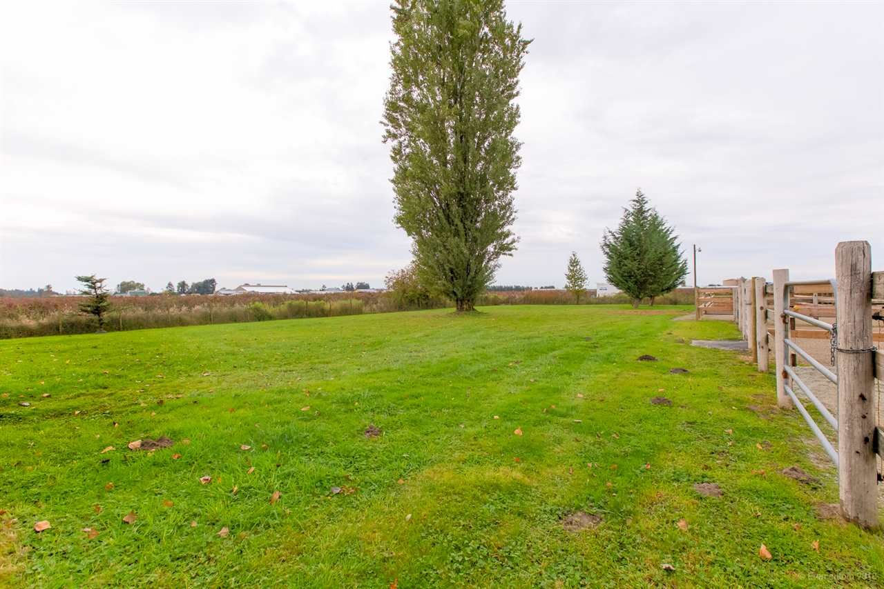 Photo 4: Photos: 13479 SHARPE Road in Pitt Meadows: North Meadows PI House for sale : MLS®# R2420820