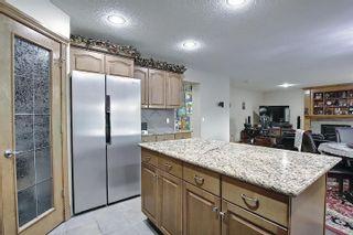 Photo 12: 6405 SANDIN Crescent in Edmonton: Zone 14 House for sale : MLS®# E4245872