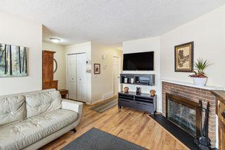 Photo 9: 151 Falsby Road NE in Calgary: Falconridge Semi Detached for sale : MLS®# A1061246