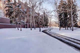 Photo 49: 500J 500 EAU CLAIRE Avenue SW in Calgary: Eau Claire Apartment for sale : MLS®# C4281669