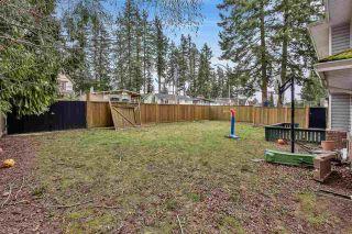 Photo 33: 12373 59 Avenue in Surrey: Panorama Ridge House for sale : MLS®# R2544610