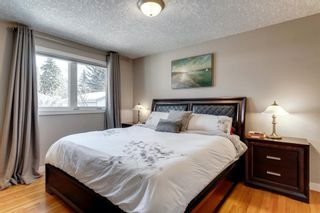 Photo 13: 10408 Fairmount Drive SE in Calgary: Willow Park Detached for sale : MLS®# A1066114